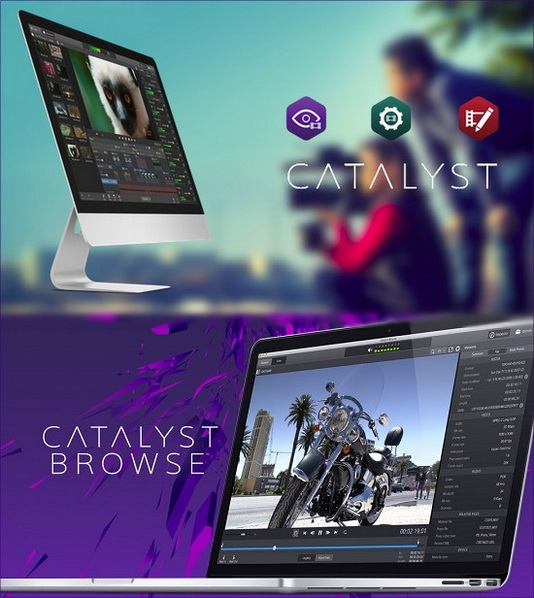 Sony Catalyst Browse Suite 2.1.0
